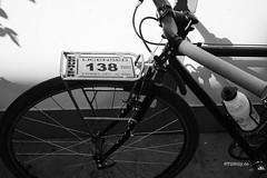 Bicycle Rack / Lowrider (Till Billy) Tags: travel bicycle boston diy check cross rando tracks police front rack license singlespeed messenger courier surly fahrrad racks solder vorne löten licensed crosscheck brazing randonneur braze gepäckträger