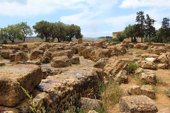 Valley of Temples (ec1jack) Tags: trip italy holiday greek march spring europe mediterranean roman may april sicily agrigento valleyoftemples 2016 kierankelly ec1jack canoneos600d