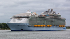 Harmony of the Seas (BraCom (Bram)) Tags: holland canon rotterdam ship widescreen nederland vessel cruiseship nl 169 nieuwewaterweg zuidholland schip botlek europoort southholland canonef70200mm europoortrotterdam bracom canoneos5dmkiii bramvanbroekhoven harmonyoftheseas