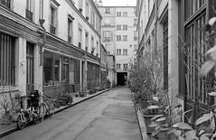Alley, Paris