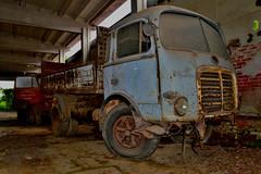 OM tigre (riccardo nassisi) Tags: abandoned truck rust ruins rusty camion om wreck scrap tigre wrecked ruggine relitto rottame abbandonato fornace epave