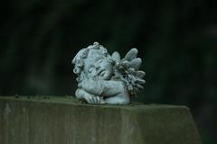 Bergfriedhof  (Heidelberg), Germany (maria_vladimirskaya) Tags: friedhof cemetery trauer memory germany graveyard  engel angel