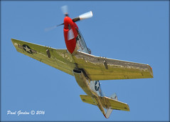 JAA_4548 (Bluedharma) Tags: colorado p51 kbjc coloradophotographer bluedharma rockymountainmetroairport stangevil coloradoshooter n11636
