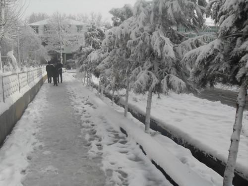 Последствия снегопада в Курган-тюбе (11)