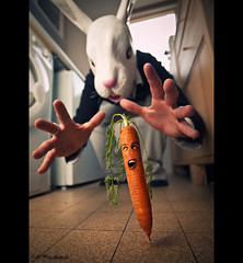 Karotte escape (Cal Redback) Tags: rabbit photoshop canon escape creative run creation cal carrot conceptual runaway lapin carotte redback calredback