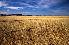 wide open spaces (david.gill12) Tags: countryside namibia luderitz