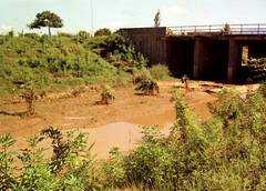 Flooded Underpass 1971 (personne.de.chandigarh) Tags: flood monsoon canonet chandigarh kodacolorx