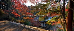 Jingoiji001 (vincemarion) Tags: red fall nature japan automne landscape rouge temple maple kyoto autumnleaves momiji paysage japon feuille koyo erable couleurautomnale