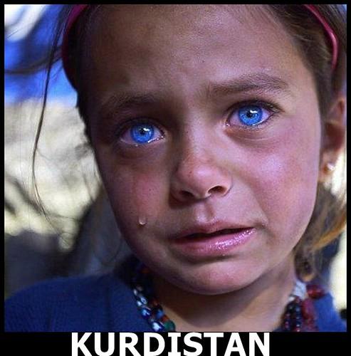 tagged search kurdish sex