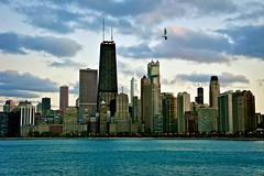 (Joshua Mellin) Tags: red white lake chicago black bird tower beach skyline clouds john oak sears searstower seagull north lakemichigan blackhawks trumptower hancock trump johnhancock willis picnik oakstreet oakst northave johnhancockcenter northavenuebeach northavenue johnhancocktower oakstreetbeach chicagoist searswillis searswillistower