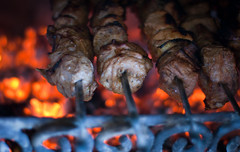 The Braslav Barbecue (lemmingby) Tags: food lake hot travels meat barbecue trips belarus coals frying shashlik roseta braslav otherwheres braslavlakes rosetamansion drivyaty