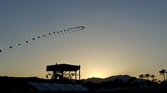 Coachella (mild_swearwords) Tags: balloons coachella polo indio