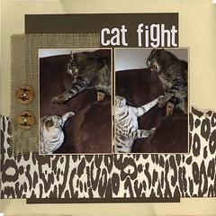 cat-fight (slkscrapbooker) Tags: load15