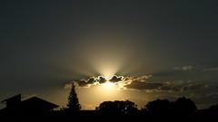 "sunbeams (Diego S. Mondini) Tags: ""flickraward"""