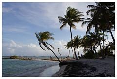 17052012-IMG_9148 (jacques.kayser) Tags: paris france vacances guadeloupe tokheim departementsdoutremer