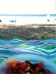 Fruit Salad (Trish P. - K1000 Gal) Tags: beach leland spring michigan blanket fruitsalad leelanau bartholomewpark northlakeleelanau iphone3gs nedowsbaybeach