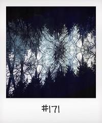 "#DailyPolaroid of 18-3-14 #171 • <a style=""font-size:0.8em;"" href=""http://www.flickr.com/photos/47939785@N05/13677937115/"" target=""_blank"">View on Flickr</a>"