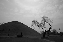 Royal tomb of Silla King (HDH.Lucas) Tags: people tree monochrome landscape lucas cannon