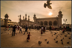 Run and Fly (ujjal dey) Tags: sunset evening kid pigeons hyderabad charminar ujjal nikond90 ujjaldey runandfly maccamosque