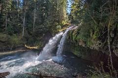 Iron Creek Falls (writing with light 2422 [NOT PRO]) Tags: creek landscape waterfall wideangle washingtonstate mountsainthelens ironcreekfalls sigma1020mmlens giffordpinchotforest sonya77 richborder