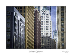 Urban Canyon (baldwinm16) Tags: city urban chicago architecture facade skyscraper downtown buidlings natureofthingsphotography