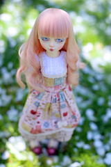 (sonorite) Tags: grey doll alice gray days bjd lapin msd greydays