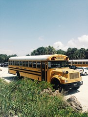 School bus (chloejadeyoung) Tags: travel family school summer vacation usa sun holiday hot bus nature yellow america outdoors photography student warm break florida miami sunny retro american abroad heat humid 2015