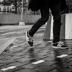 140/366 - Schuhe / Shoes (Boris Thaser) Tags: street city people blackandwhite bw man project germany walking bayern deutschland bavaria clothing shoes flickr pattern adult candid linie streetphotography scene 11 menschen line clothes explore rainy stadt creativecommons photoaday sw mann 365 adidas unposed schuhe muster projekt gardener augsburg regnerisch tog gehen pictureaday kleidung strolling szene spazieren 366 ungestellt bekleidung schwarzweis grtner project365 strase flanieren schlendern project366 erwachsener strasenfotografie streettog sonyrx100ii sonydscrx100ii zweisichtde zweisichtig