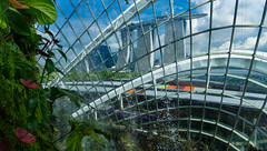 Cloud Forest Bio Dome (ben_leash) Tags: blue cloud building green architecture waterfall singapore asia cloudy sony bluesky anthurium biodome a77 marinabay marinabaysands gardenbythebay