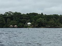 """Bocas del Toro: une maman dauphin et son bébé ! <a style=""""margin-left:10px; font-size:0.8em;"""" href=""""http://www.flickr.com/photos/127723101@N04/27236199372/"""" target=""""_blank"""">@flickr</a>"""
