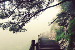 Into the Fog (Meeg.E) Tags: china mountain travelling beauty rain fog landscape student scenery natural backpacking      huangshan anhui