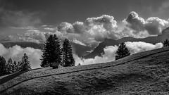 lonely cottage above the clouds (hjuengst) Tags: blackandwhite mountain clouds cloudy wolken liechtenstein landschaft wetter schwarzweis triesenberg