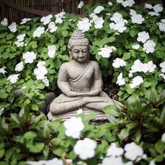 P6300379.jpg (DWO630) Tags: plant flower nature statue garden square virginia buddha voigtlander olympus richmond va nokton rva m43 095 primelens micro43 voigtlander25mm095 em10ii