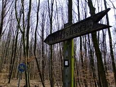 DSCF0790 (Isabel@de) Tags: germany bochum 2012 201203