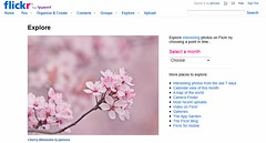 Cherry Blossoms Explore Front Page (janruss) Tags: explore cherryblossoms explorefrontpage janruss janinerussell