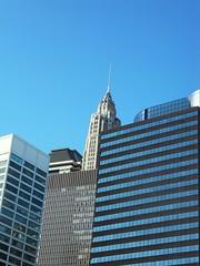 New York(338)