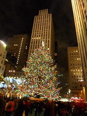 New York(105)