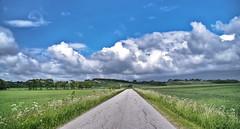 p vej mod regn (pervisti) Tags: blue summer sky storm nature clouds landscape denmark photo cornfield exposure pentax dnemark kx skov landskab sby vejr nordjylland vendsyssel pervisti