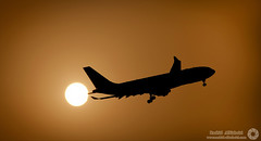 SUNSET,,,,, (RASHID ALKUBAISI) Tags: sunset sun nikon n com  fx nano d3 doha qatar rashid d4       d3x nikond4 alkubaisi d3s  ralkubaisi mygearandme wwwrashidalkubaisi