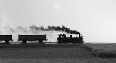 99 1542-2  piggyback freight (RhinopeteT) Tags: germany railway steam east oschatzmugeln