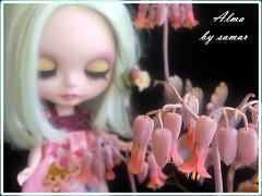 Flores ^___^