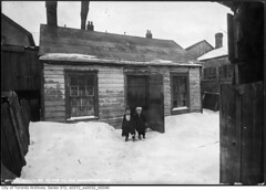 Rear view of old houses, Centre Avenue (Toronto History) Tags: toronto ontario canada immigrants baystreet slums to