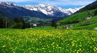 Frühling im Ridnauntal