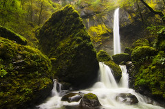 Elowah Falls (Bill Ratcliffe) Tags: green water oregon waterfall moss spring pacificnorthwest columbiarivergorge elowahfalls d7000