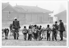 Yunnan - Going to school (TOONMAN_blchin) Tags: china yunnan thegalaxy toonman mygearandme mygearandmepremium mygearandmebronze mygearandmesilver
