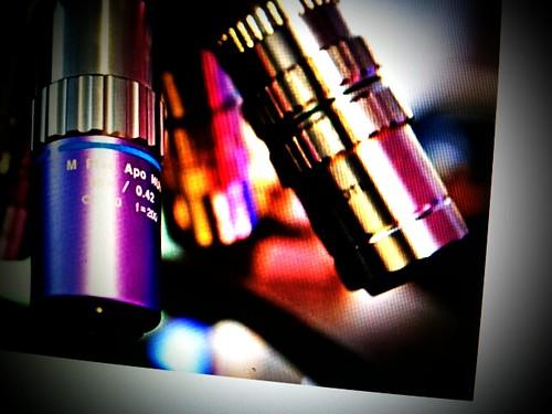 Lightbox_1337499597582