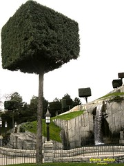 How can someone make a round into  a square box! (dimitra_milaiou) Tags: world life park city travel paris france tree green love nature water strange smile walking square real greek photo waterfall europe different box earth disneyland sony happiness disney enjoy cycle round planet reality unusual create shape crisis creations dimitra dscp93a νερο δεντρο πρασινο παρίσι κυκλοσ τετραγωνο δημητρα milaiou μηλαιου ντισνευλαντ σχημα