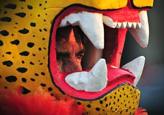Hombre Jaguar (Herbey Morales Travel & Lifestyle Book) Tags: travel mexico nikon retrato danza mascara jaguar d300 azteca prehispanico concheros herbeymorales