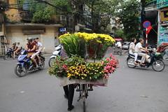 Flower delivery (Bex.Walton) Tags: travel flowers streetscene vietnam motorbike hanoi oldquarter