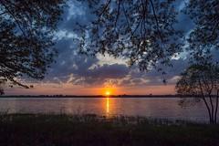 Just dreaming (Danny Lamontagne) Tags: sunset sky orange sun tree water canon river soleil eau coucher ciel nuit arbre fleuve